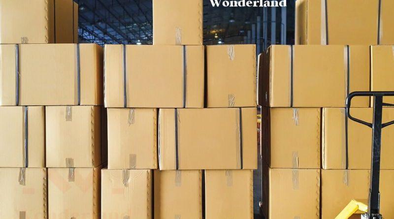 thung-carton-gia-si-wonderland